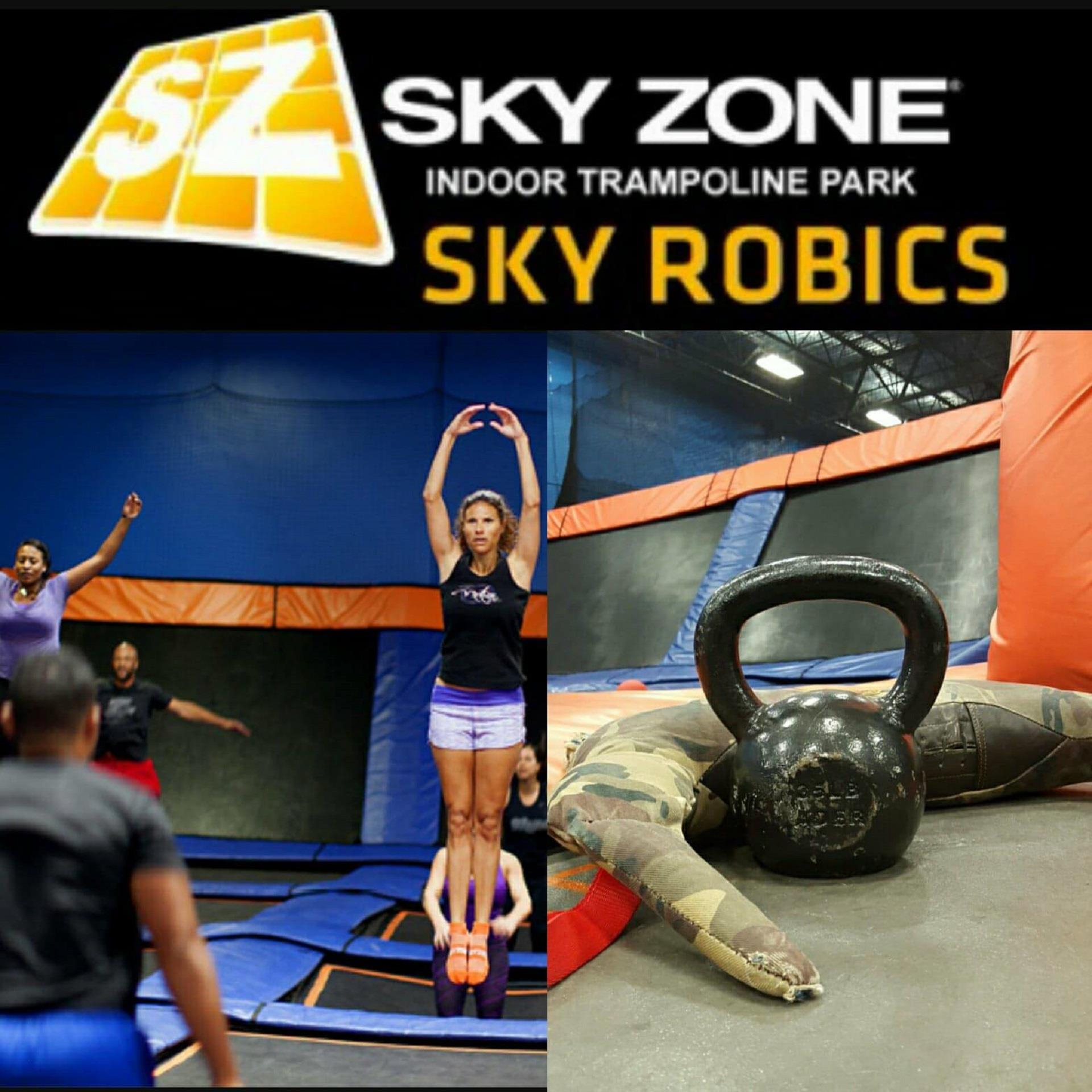graphic about Printable Sky Zone Waiver referred to as Sky Zone Buffalo Inside Buffalo NY Vagaro